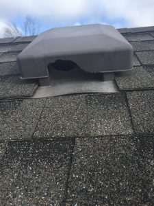 roof vent chewed by squirrel